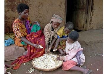 1 persona su 9 soffre la fame nel mondo