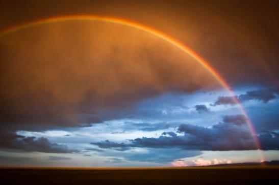 L'albero della vita (6) arcobaleno-nel-deserto-del-gobi