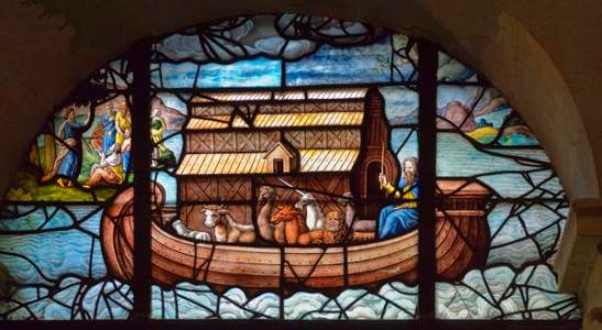 Arche de Noé3