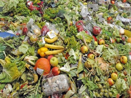 foodwaste-blog