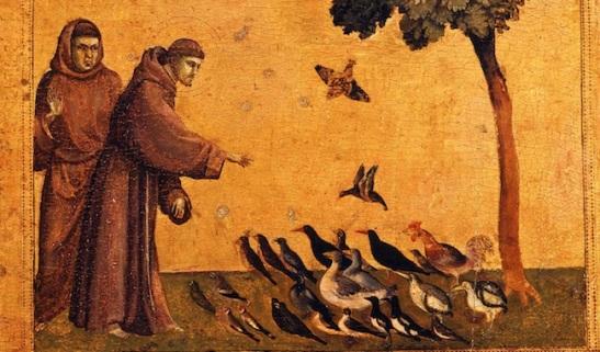 La conversion écologique des chrétiens