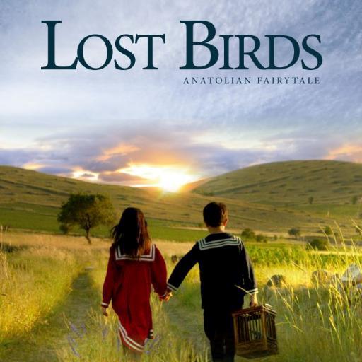 Lost birds4