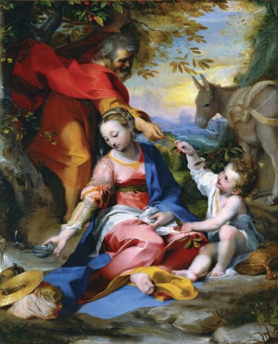05 Madonna delle ciliegie del fiammingo Dieric Bouts