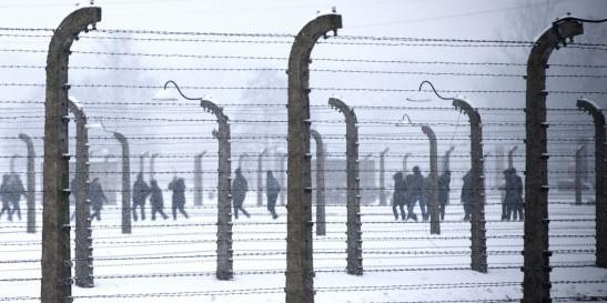 Auschwitz 5 70 anos depois