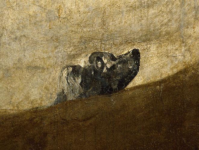 cane di Goya