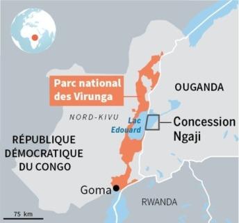 la bataille pour la protection du parc des Virunga