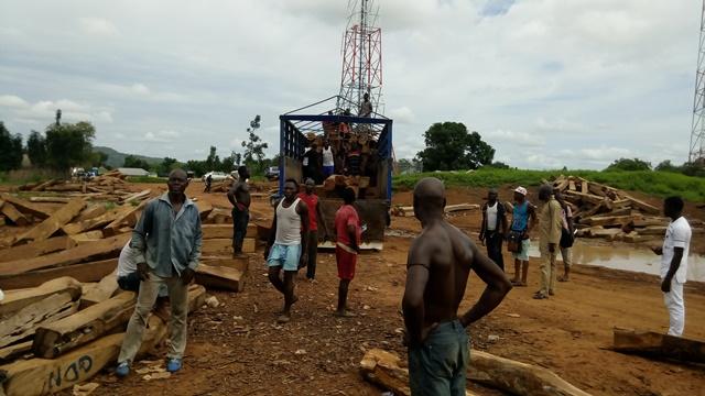 La Cina saccheggia le ultime foreste del Senegal