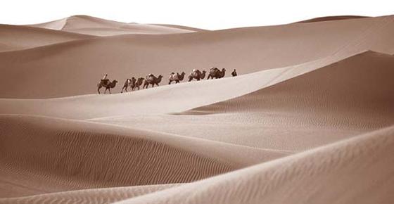 DESERTO.jpg