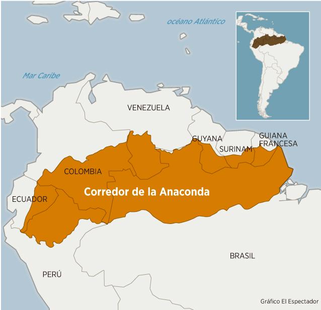 La última locura para salvar la Amazonia