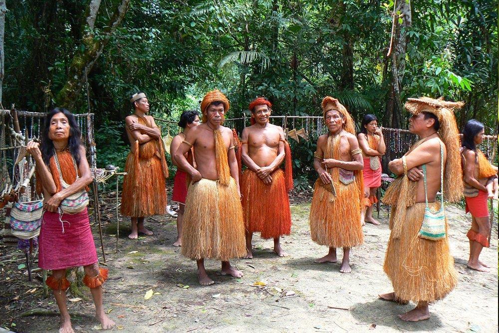 """Il Card. Hummes: """"Per l'Amazzonia un modello di sviluppo a partire dal Vangelo"""""""