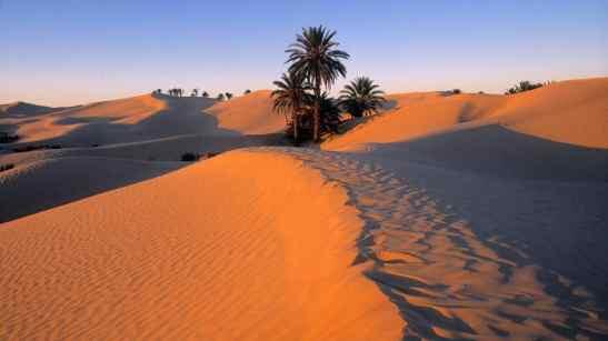 meditazione-nel-deserto-6