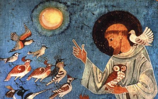 Riscoprirsi Fratelli e Sorelle nella Comunità della Creazione