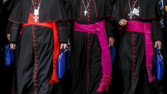 padri sinodali