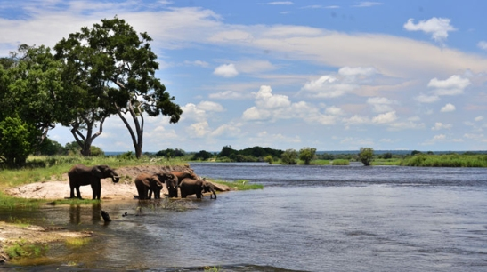 victoria-falls-3-days-elephant-national-park