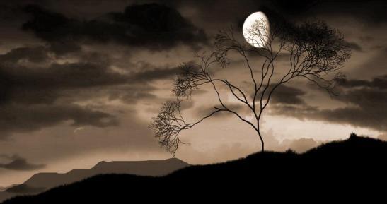 -fernando-pessoa--penso-a-te-nel-silenzio_notte
