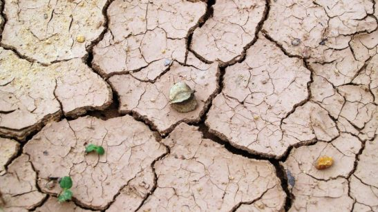 Giornata mondiale lotta alle desertificazioni. A rischio anche Paesi europei