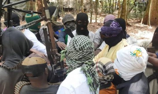 Isis in RDC