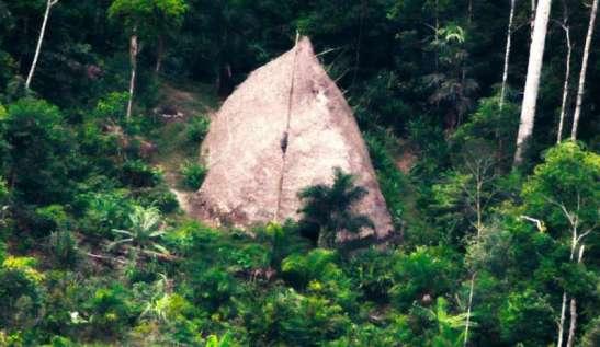img800-popoli-indigeni--la-difficile-lotta-per-la-sopravvivenza-146933
