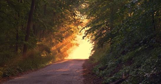 Una via per la maturazione umana e spirituale