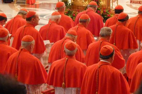 Consistory_of_cardinals_in_St_Peters_Basilica_on_Nov_4_2012_Credit_Lewis_Ashton_Glancy_CNA_CNA_2_12_15