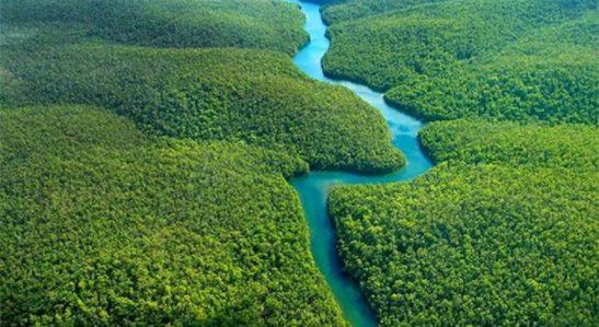 rio-amazonas-amazonia-750x410
