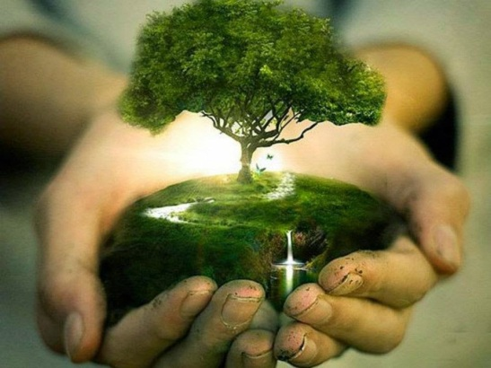 naturaleza_en_tus_manos