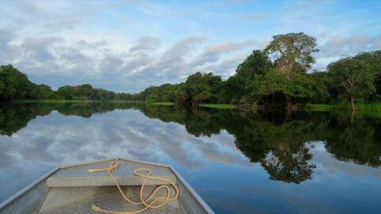 Siete claves teológicas para el Sínodo de la Amazonía