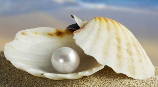 la-perla-preziosa